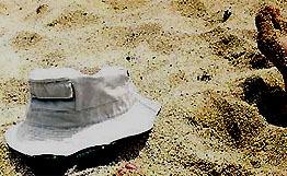 Инженерно-экологические изыскания - Бактерии группы кишечной палочки в грунтах